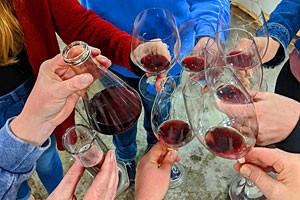 AniChe Cellars: Wine Tours & Events for the public
