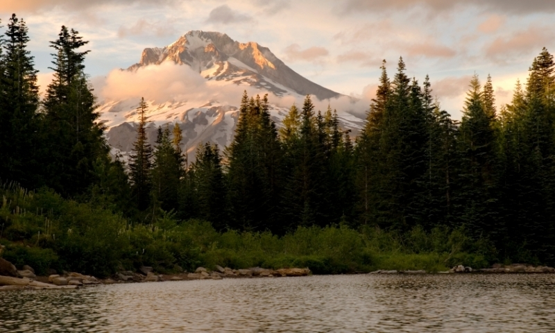 Looking toward Mount Hood from Mirror Lake