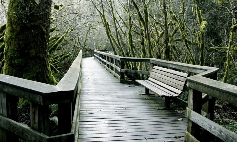 Wildwood Recreation Area OR