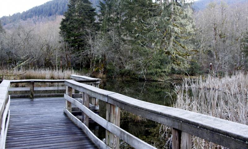Wildwood Oregon
