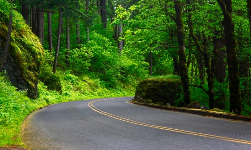 Historic Columbia River Gorge Highway in Spring