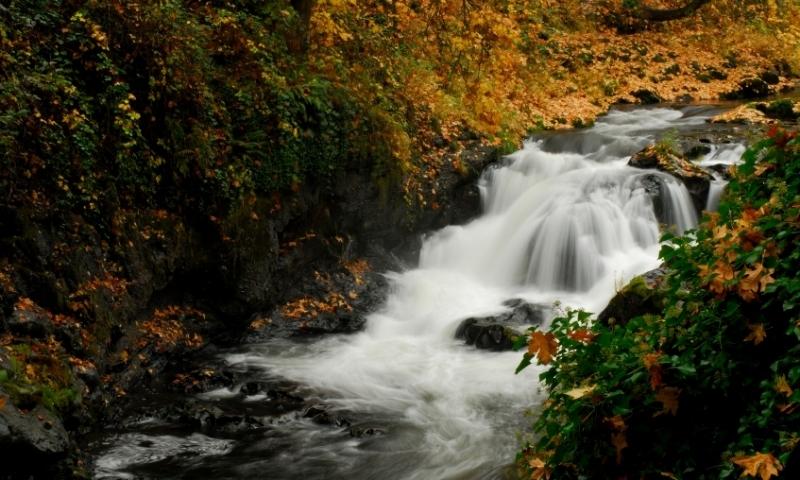 Oregon Deschutes River