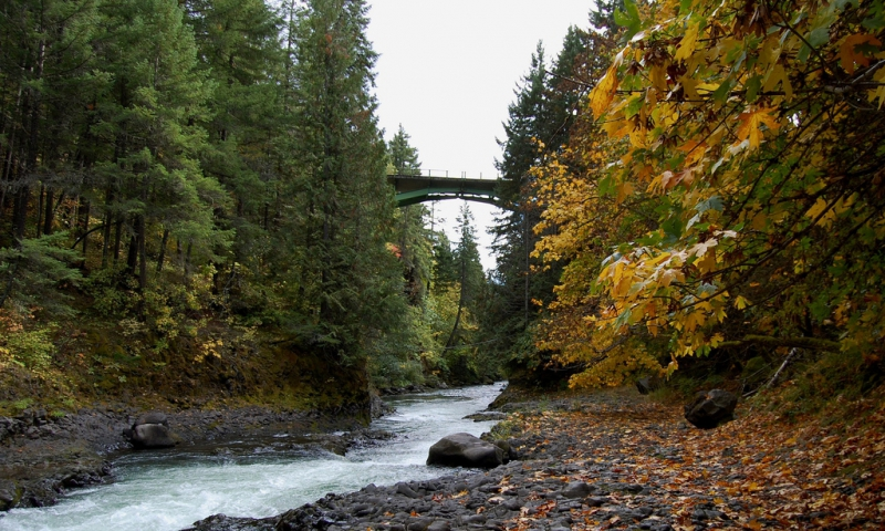 White Salmon River Oregon Fly Fishing Camping Boating