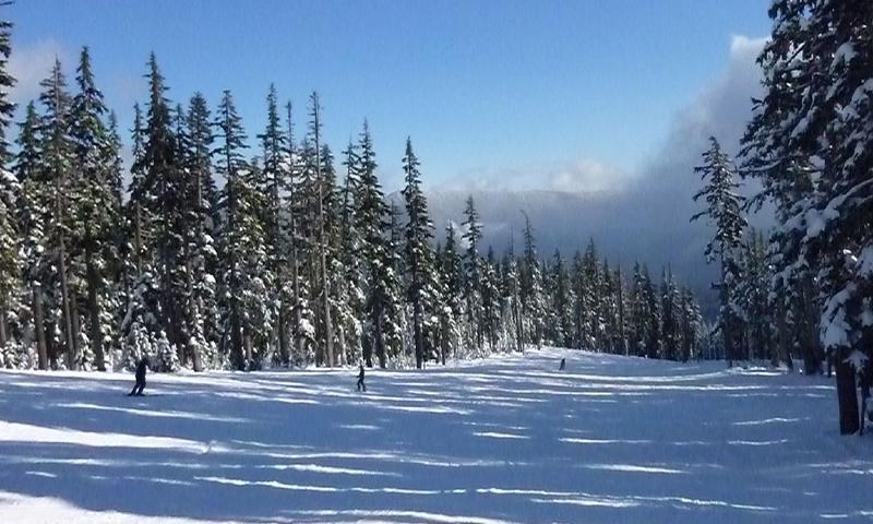 Mount Hood Meadows