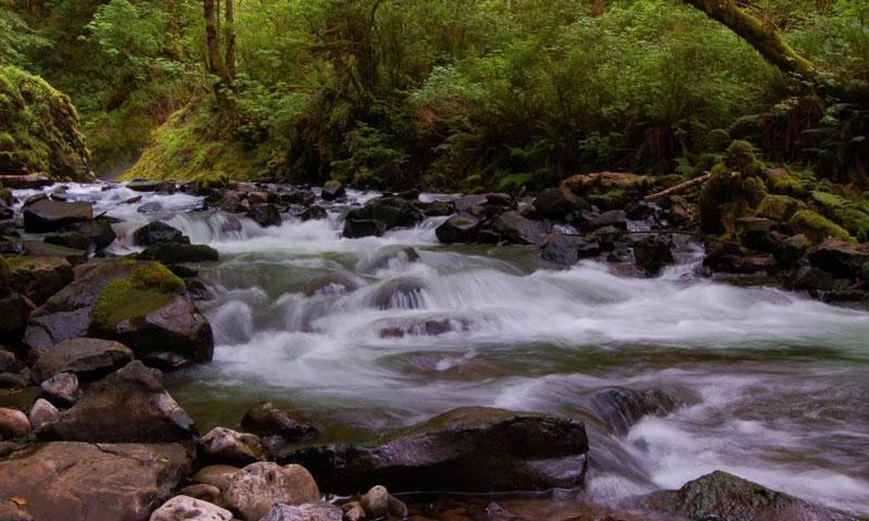 Bridal Veil Creek near Bridal Veil Falls in Hood River Oregon