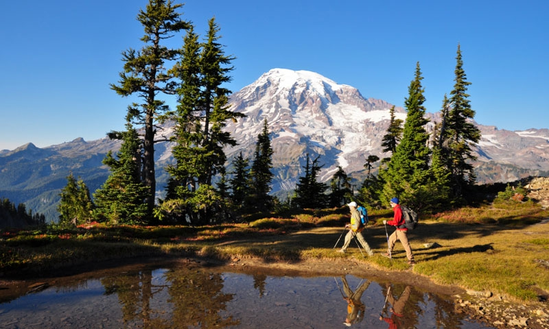 Mount Rainier National Park Washington Travel Alltrips