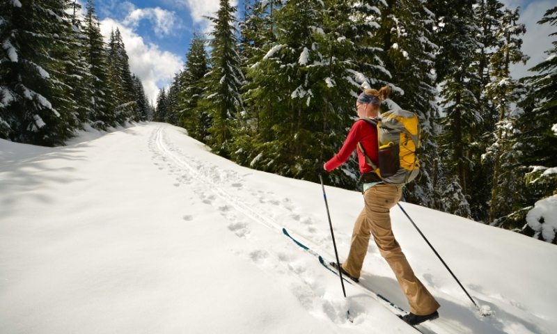 Cross Country Skiing to Trillium Lake in the Mount Hood National Forest
