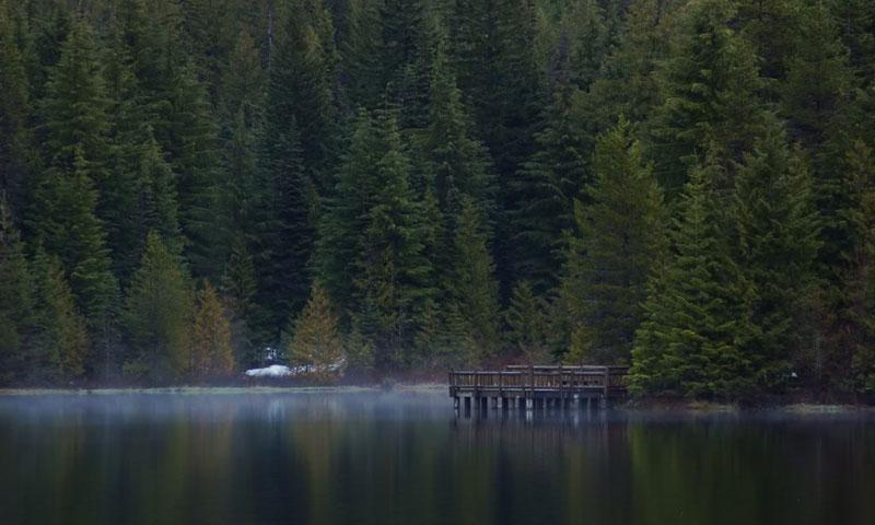 Mist over Trillium Lake