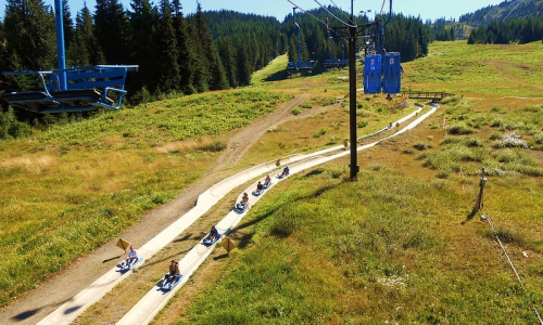 Mount Hood Alpine Slide